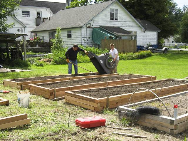 Raised bed blitz