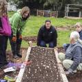 Darien talks about good practice for planting garlic